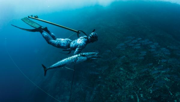 Riffe Travel speargun wahoo spearfishing