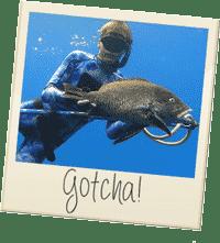 gotcha-polaroid