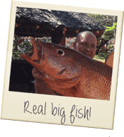 kenya-real-big-fish