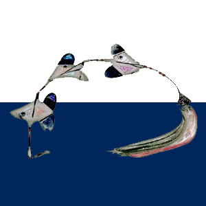 Spearfishing Flashers
