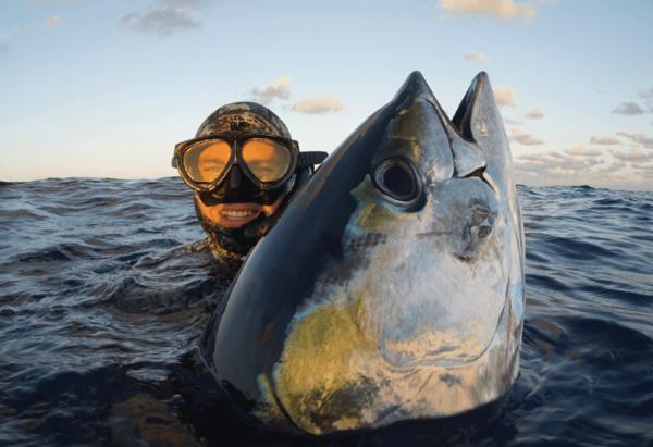 Riffe Blue Water Elite speargun in water