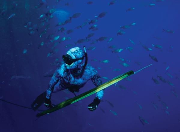 Riffe Island speargun in water