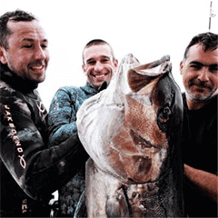 UK spearfishing courses