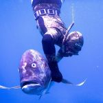 Underwater - spearfishing