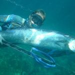 Spearfishing in Thailand - underwater