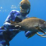 Spearfishing in Thailand - underwater photo